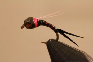 Black Jack Fly Pattern