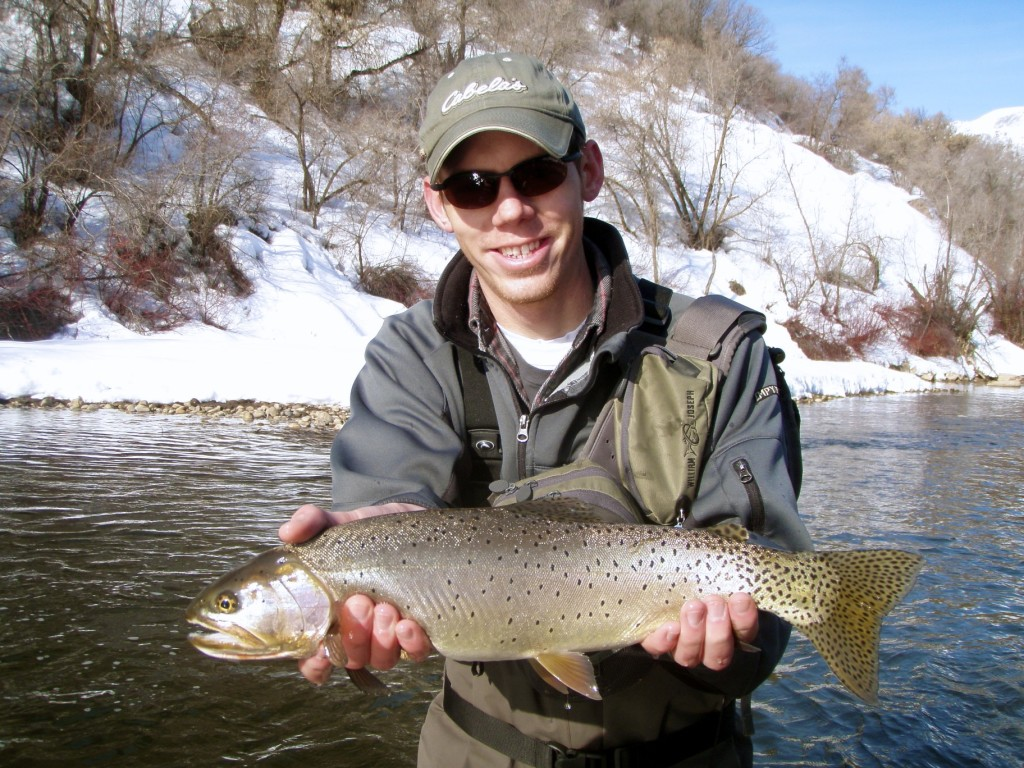 Utah Fly Fishing Cutthroat Trout