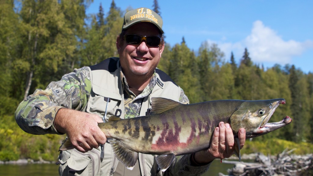 Alaska Chum Salmon on the Fly