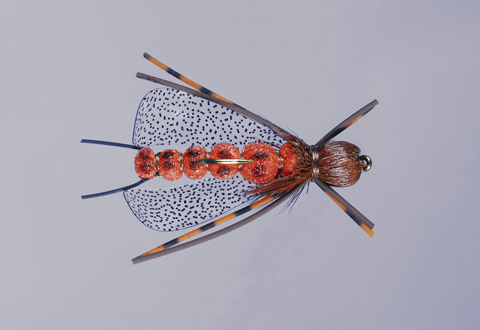 J's Salmonfly In-The-Zone-Stone